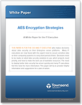 encryption strategies white paper