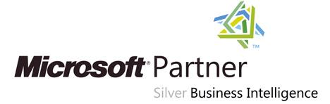 Microsoft BI Partner