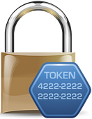encryption and tokenization