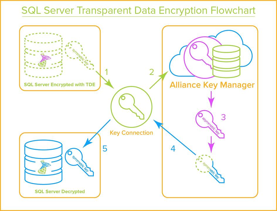 SQL Server -Transparent Data Encryption Flowchart