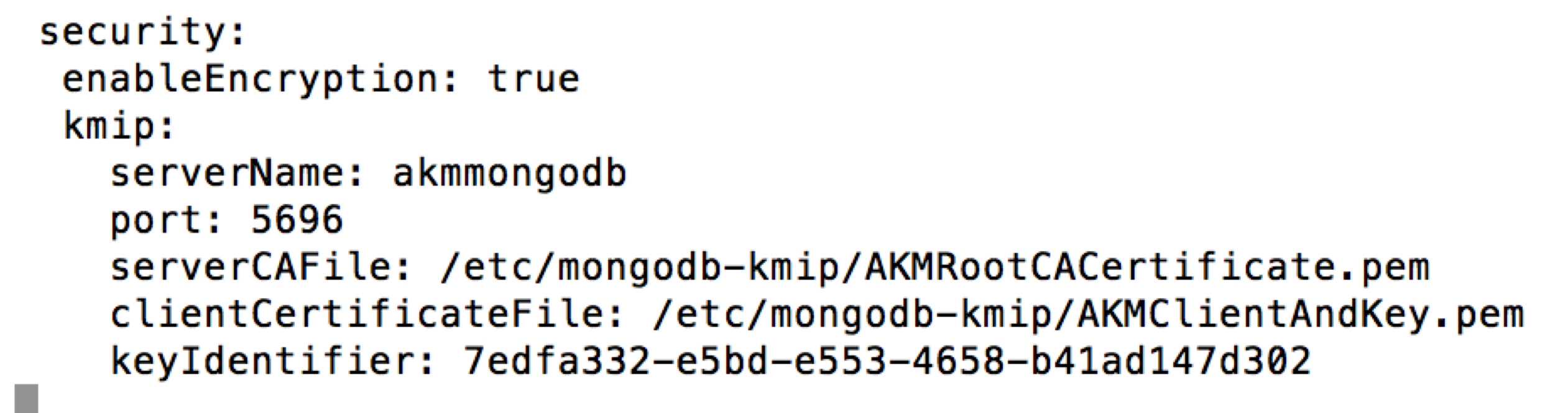 Blog | Townsend Security | MongoDB