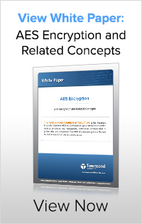 Click to Download the White Paper on AES Encryption