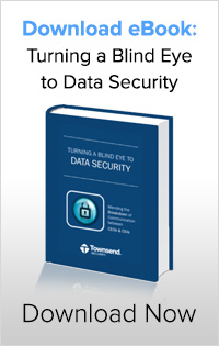 eBook Turning a Blind Eye to Data Security