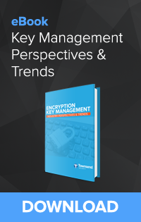 Encryption Key Management Industry Perspectives and Trends eBook